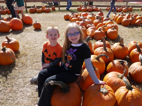 Pumpkin patch 2013 024
