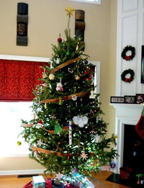 Tree2013