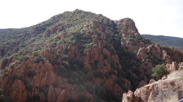 Arizona 002
